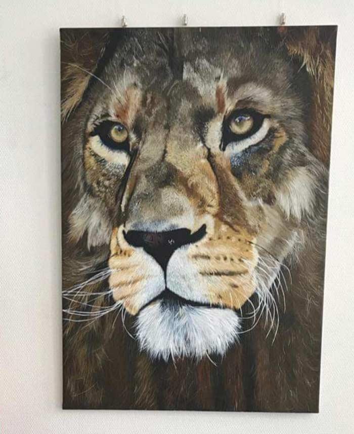 Hyper Realistic lion portrait