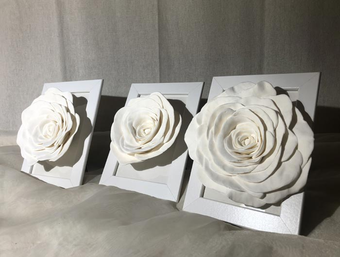 The three white Roses in a frame