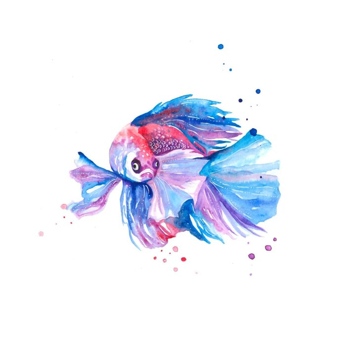 The Betta Fish watercolor painting on paper