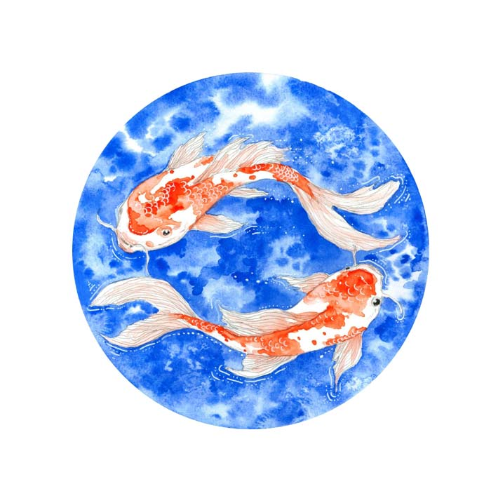 The Red Koi Fish watercolor painting on paper