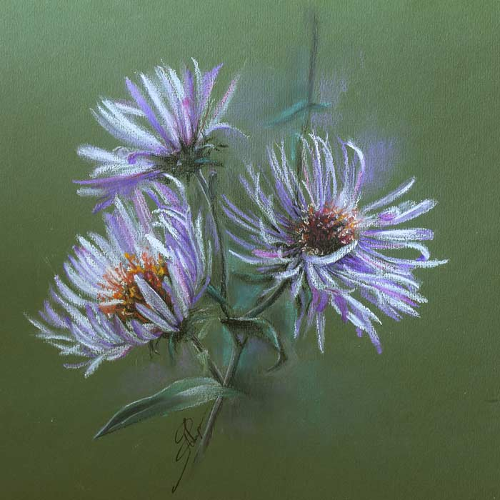 Paintings the Beauty of Flowers With Soft pastels