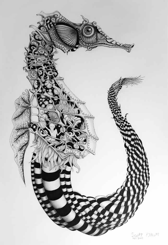 Seahorse drawing Artist Scott Elliott