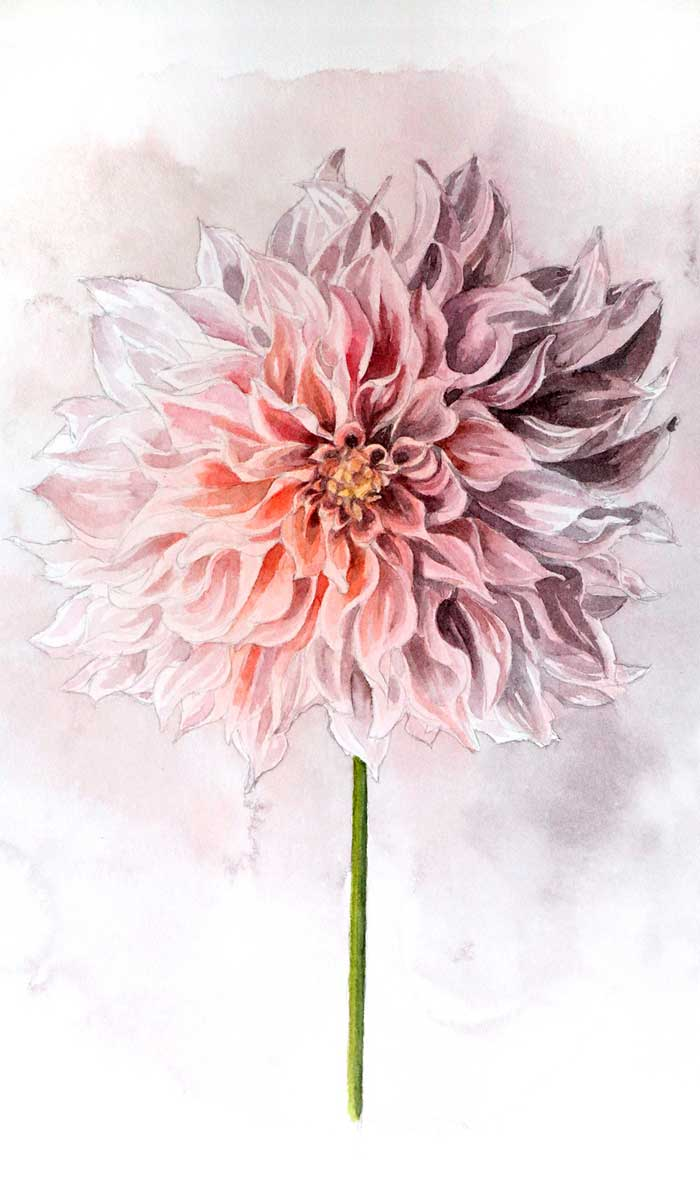 Paintings the beauty of flowers with watercolor