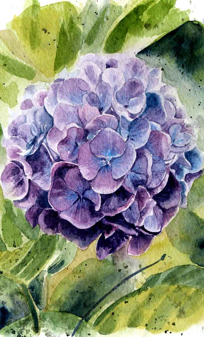 Purple flower painting with watercolor