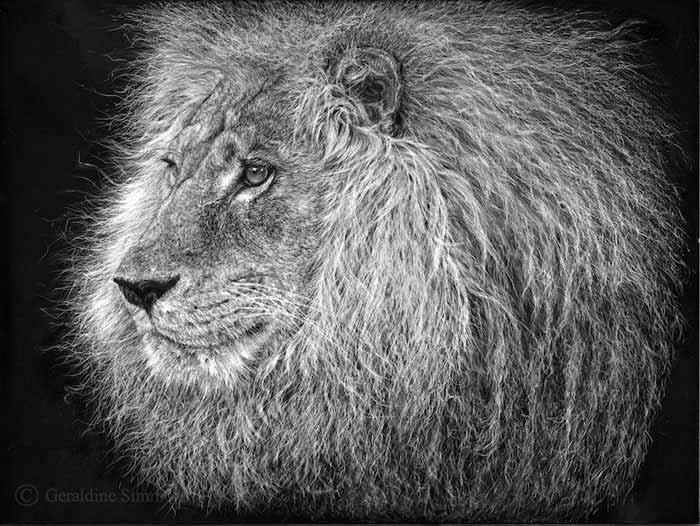 Wildlife Artist to raise awareness for endangered wildlife