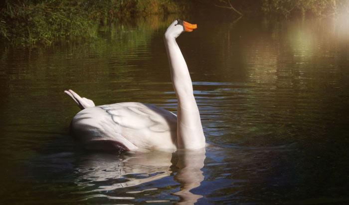Swan body art by Gesine Marwedel