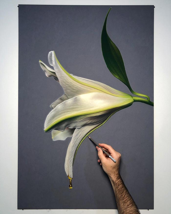 Oil pastel drawings hyperreal of flowers dripping honey