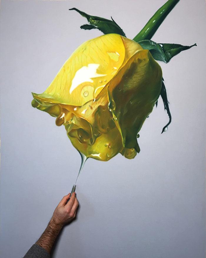Yellow rose dripping honey