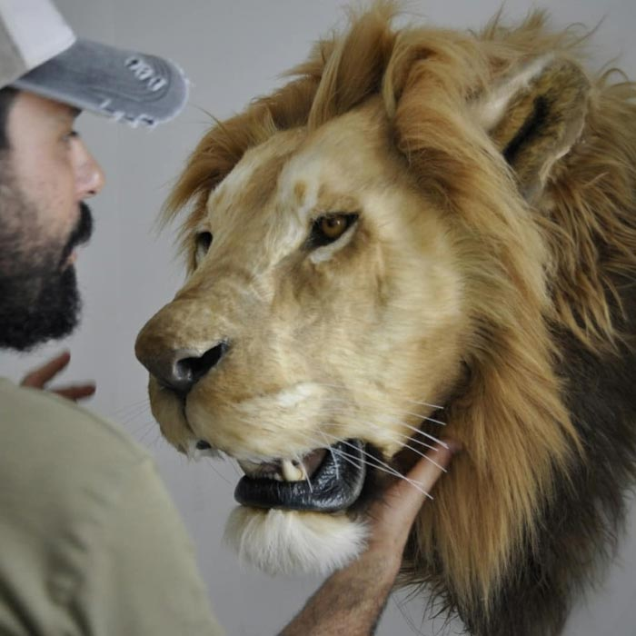 Lion Head Replica Handmade by Ami Zarug