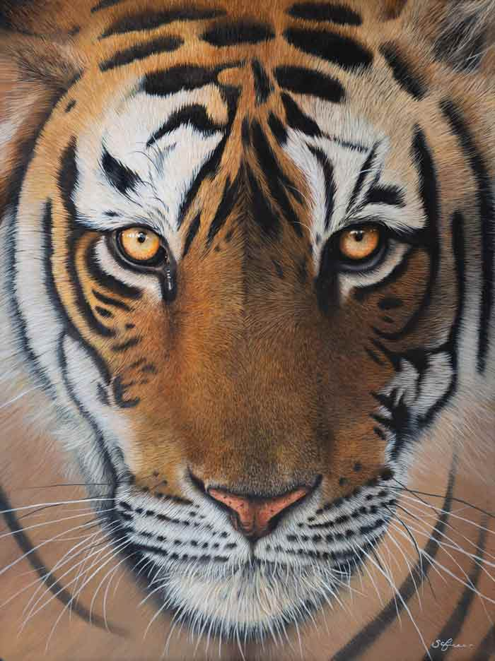 Tiger painting by Sophie Green