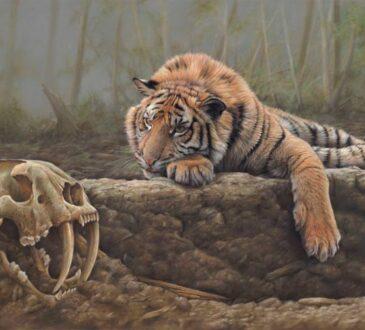 Wildlife paintings by artist Eric Wilson
