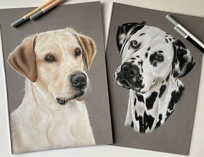 Drawings of dog portrait by Hannah