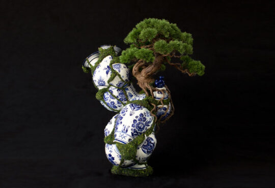 Beautiful bonsai sculptures