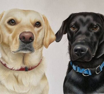 Portrait of dogs by Artist Hannah