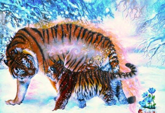 Farewell tiger painting by Safa Qureshi