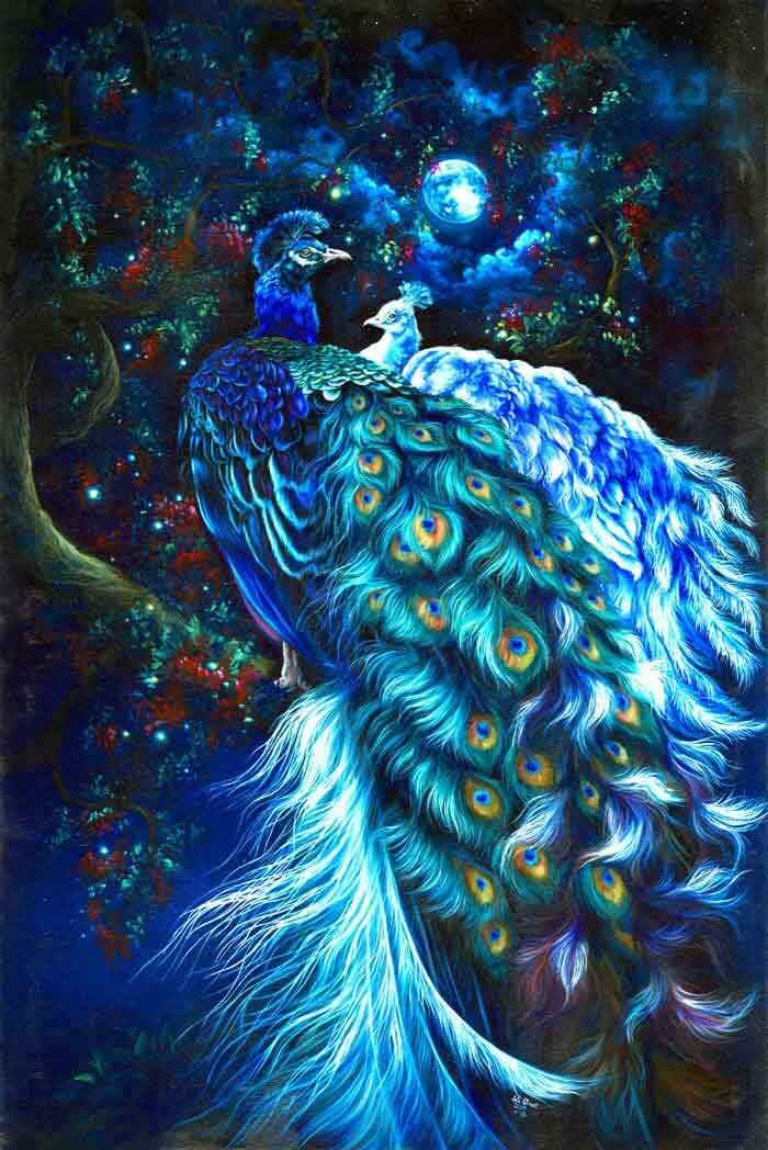Romance peacock painting by Safa Qureshi