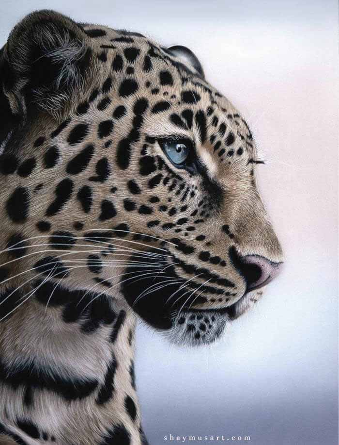 Incredible realistic leopard drawing