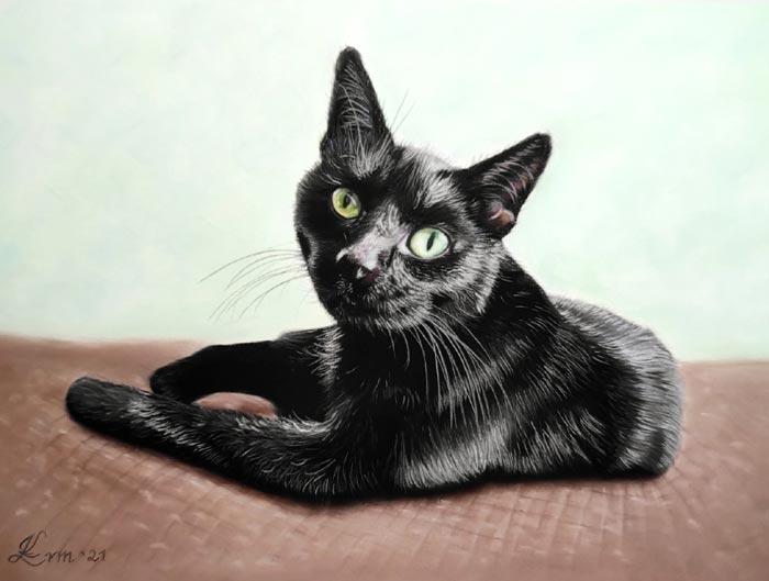 Black cat realistic drawing