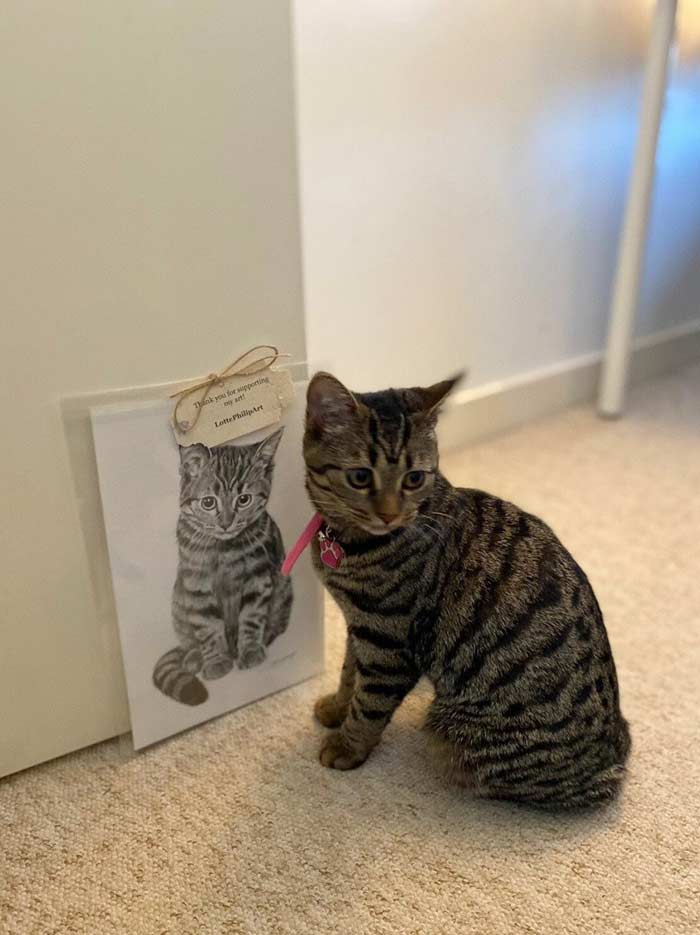 Cat drawing by Lotte Philip