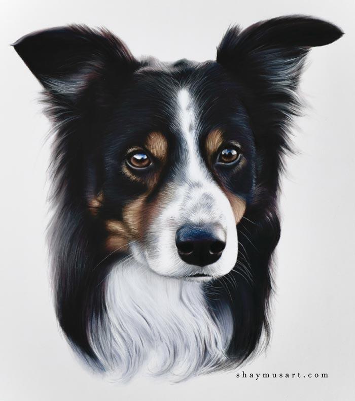 Amazing realistic pet portraits