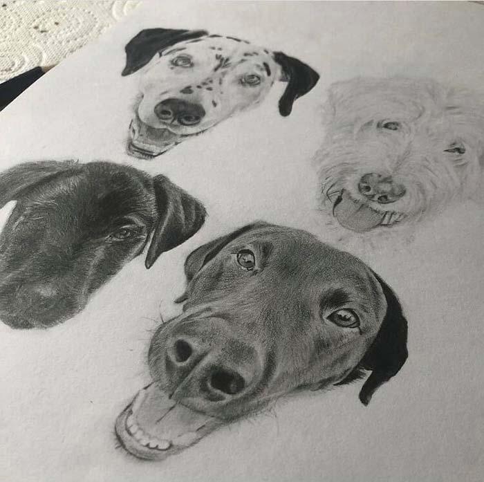 Dogs portrait by Lotte Philip