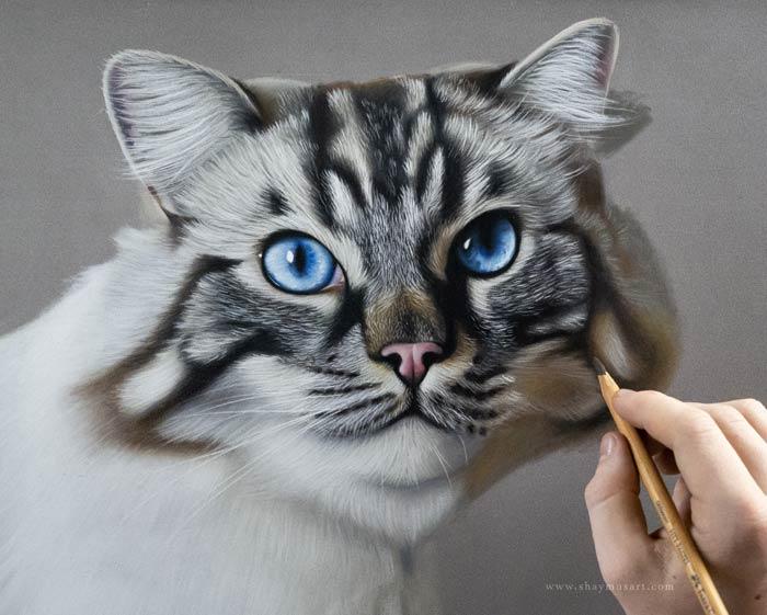 Realistic cat portrait drawing