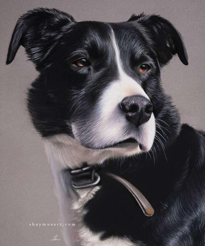 Amazing realistic dog portrait
