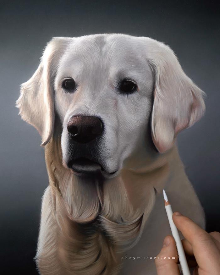 Hyper realistic pet portrait