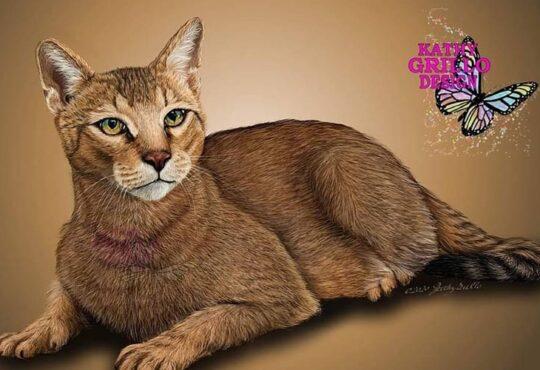 Animal digital paintings