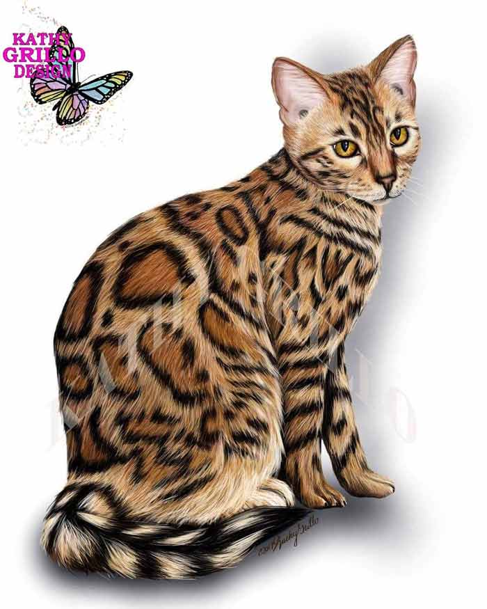 Bengal cat digital painting by Kathy Grillo