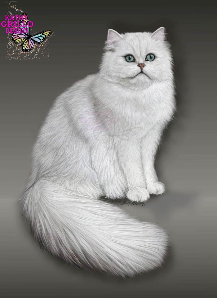 Cute cat digital art by Kathy Grillo