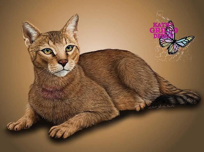 Jungle cat digital painting by Kathy Grillo