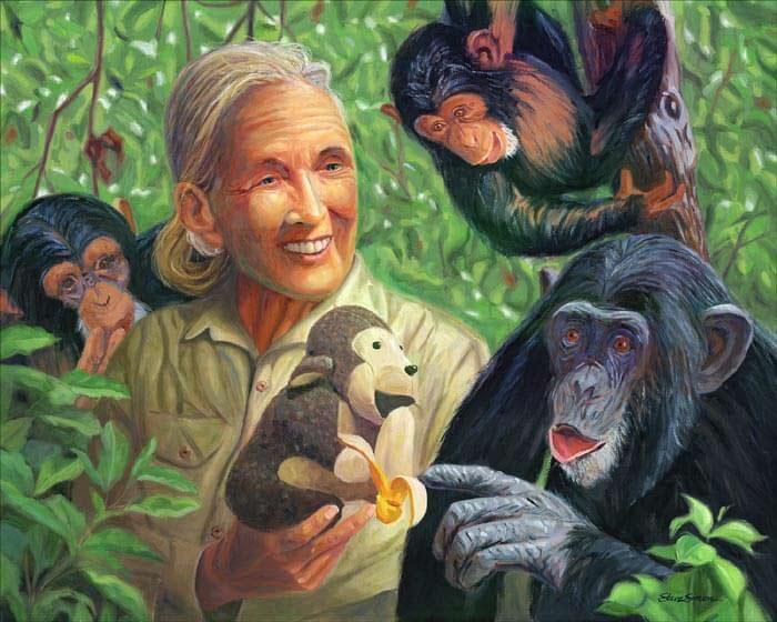 Jane Goodall painting by Artist Steve Simon