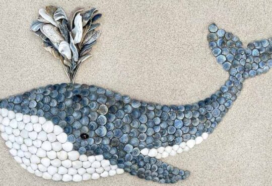 Sand and Shell Artist Anna Chan