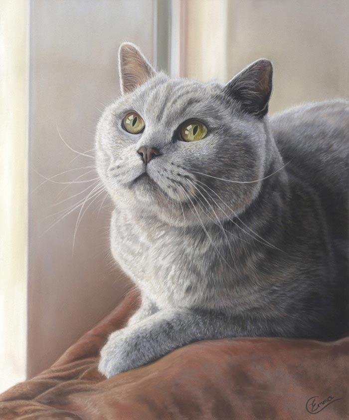 British Cat in Soft Pastel