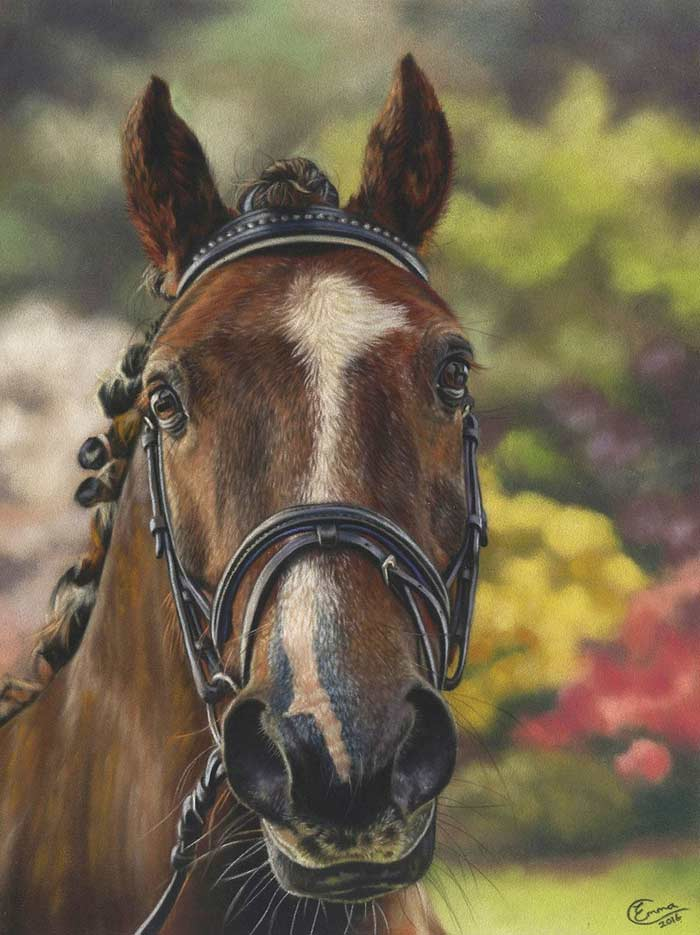 Animal horse in soft pastel drawing