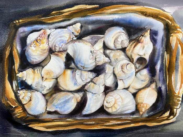Lots of shells watercolor painting by Maria Raczynska