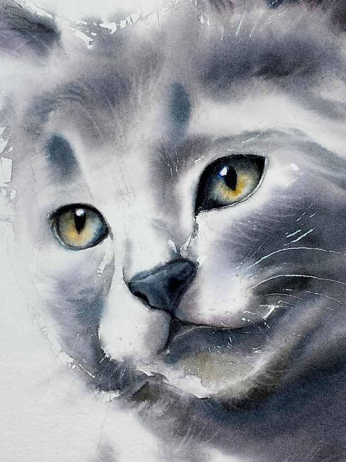 Cat watercolor painting by Maria Raczynska